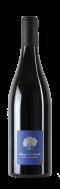 Blauburgunder Pinot Noir Alte Reben